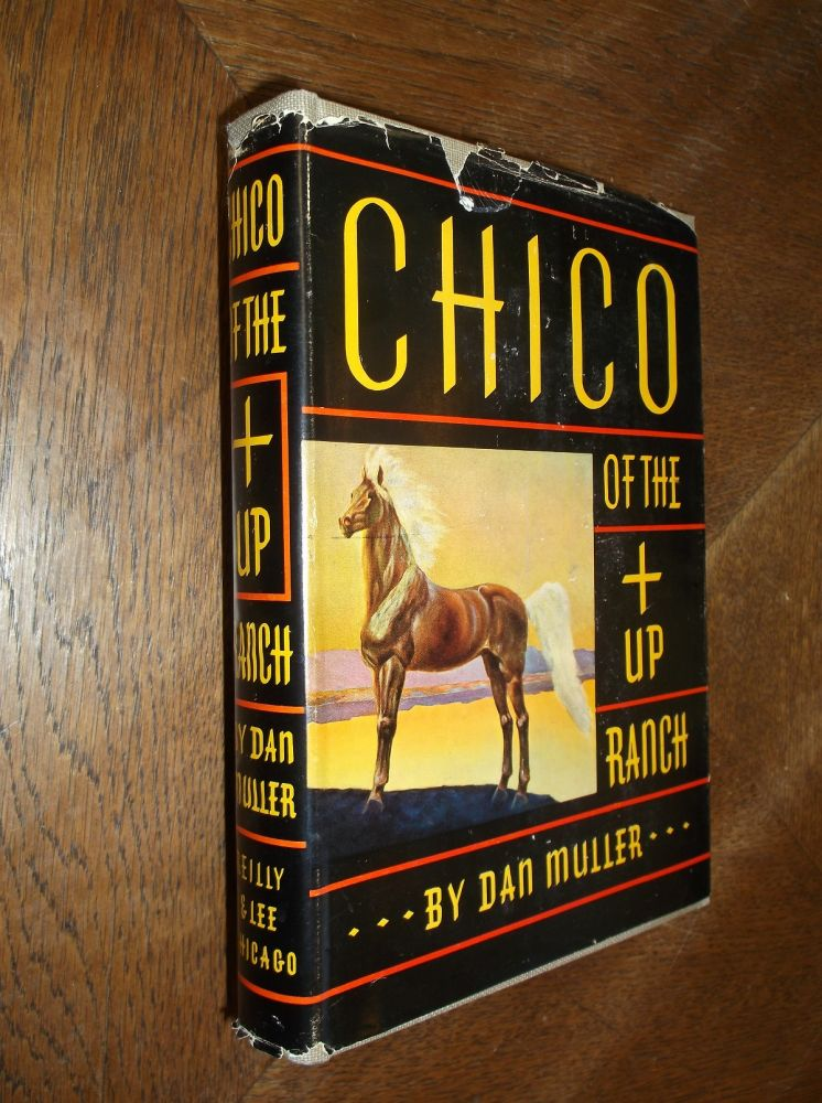 CHICO OF THE +UP RANCH. Dan Mulller.